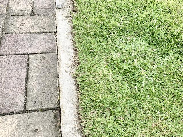 芝生の境目
